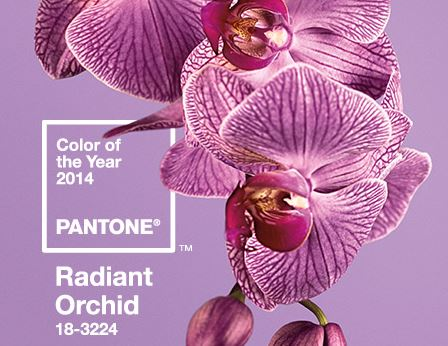 2014 Pantone Color of the Year – Radiant Orchid